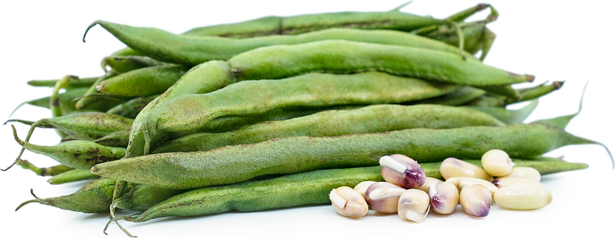 Long Valor Beans picture