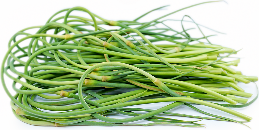 Garlic Scapes picture