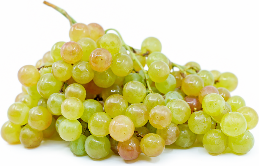Pink Muscat Grapes picture