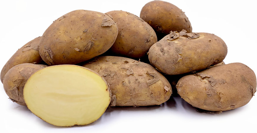 Jersey Royal  Potatoes picture