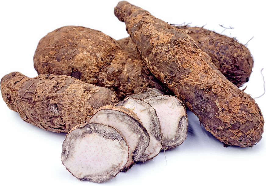 West African Coco Yams picture