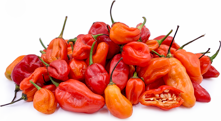 West African Bonnet Chile Peppers picture
