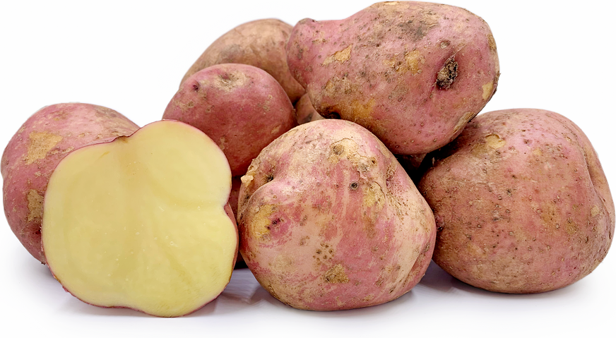 Canchan Potatoes picture