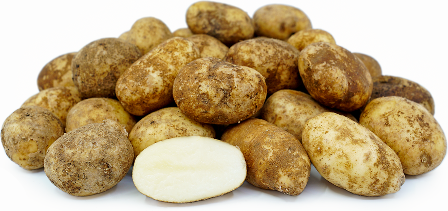 Baby Russet Potatoes picture