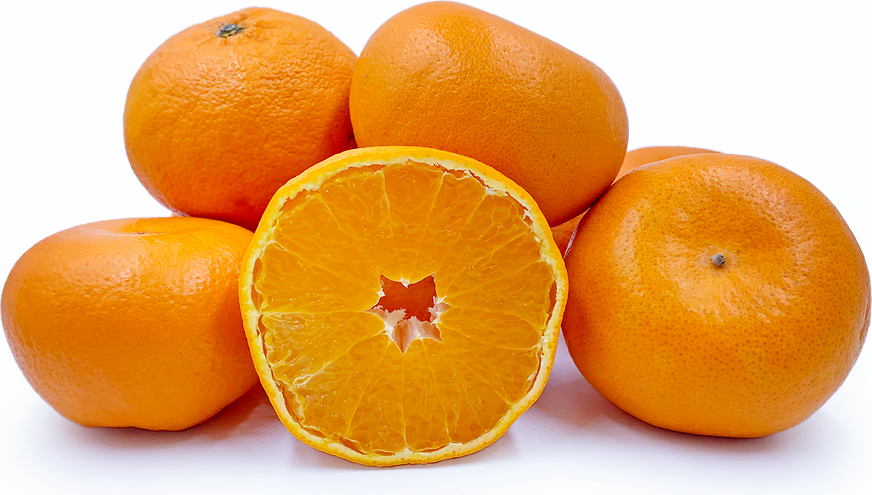 Hamasaki Oranges picture