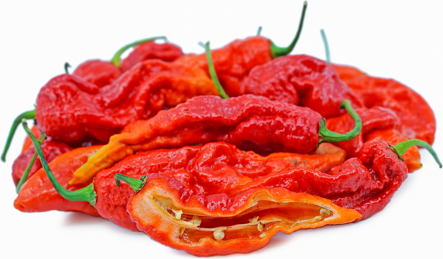 Red Bhut Chile Pepper picture