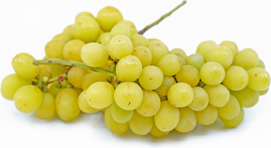 Shine Muscat Grapes picture