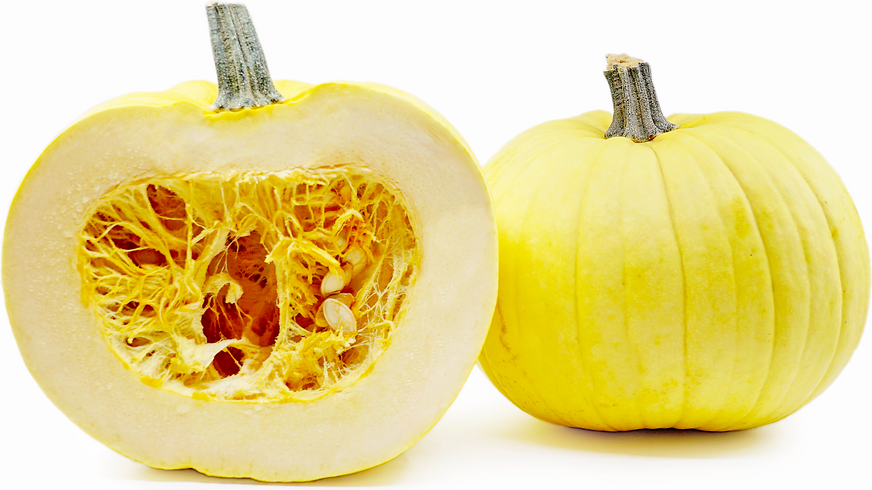 Mellow Yellow Pumpkins picture