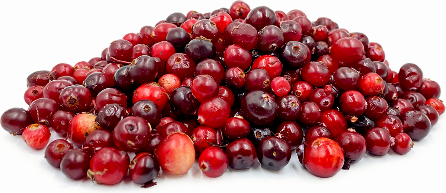 Siberian Swamp Cranberries picture