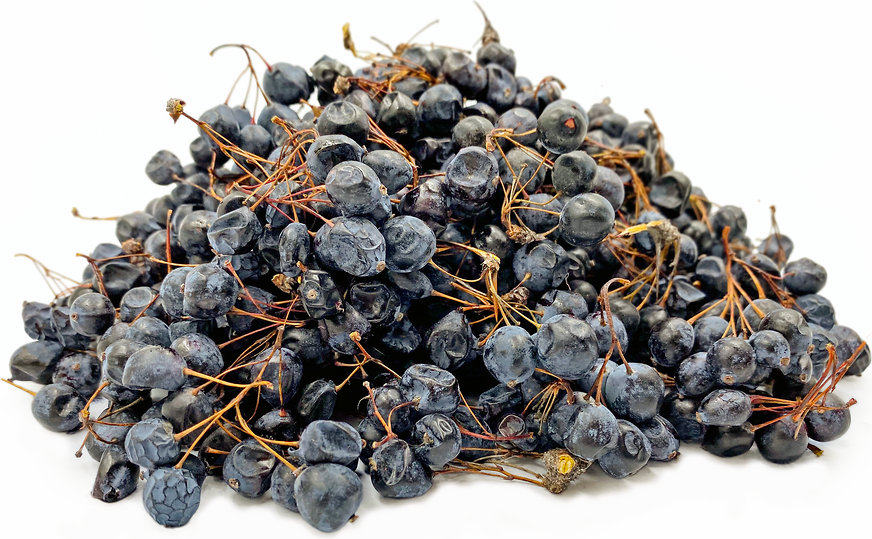 Kashgar Barberry Berries picture