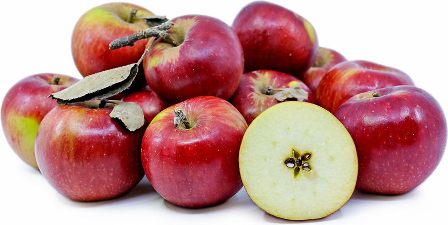 Winesap Apple picture