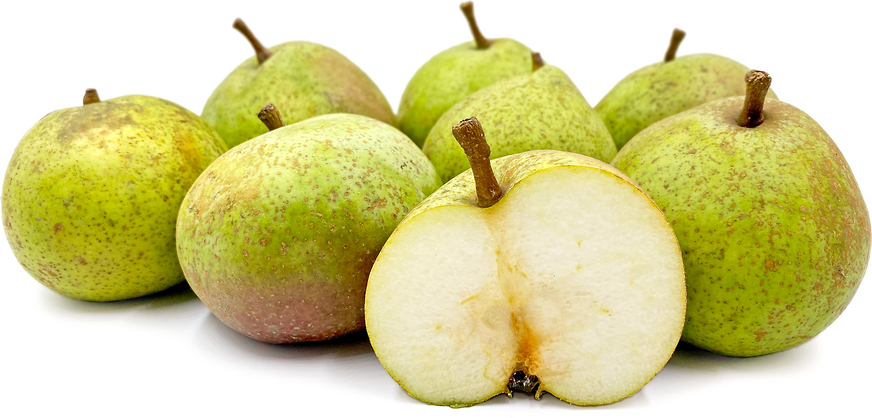 Brederode Pears picture