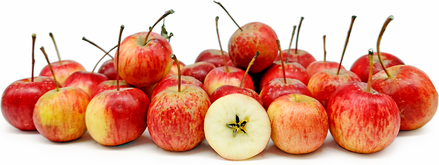 Ranetka Apples picture