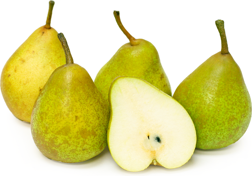 French Butter Pears