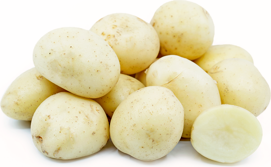 White Creamer Potatoes