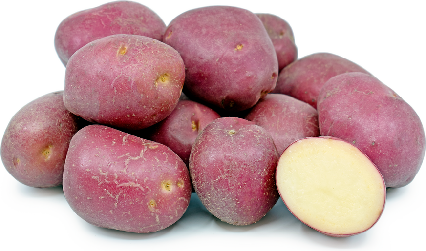 Red Creamer Potatoes
