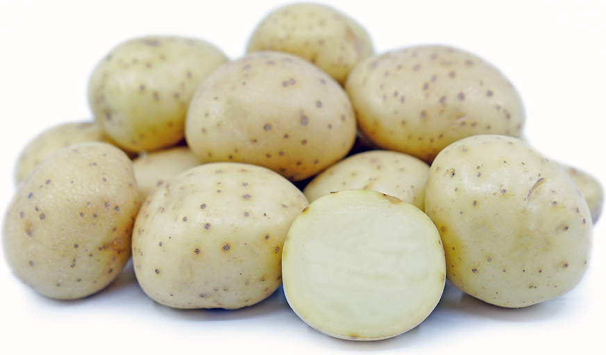White Rose Potatoes