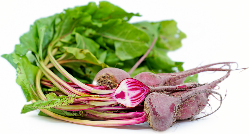Baby Chioggia Beets picture
