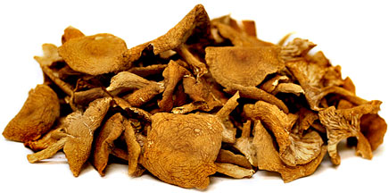 Dried Candy Cap Mushrooms