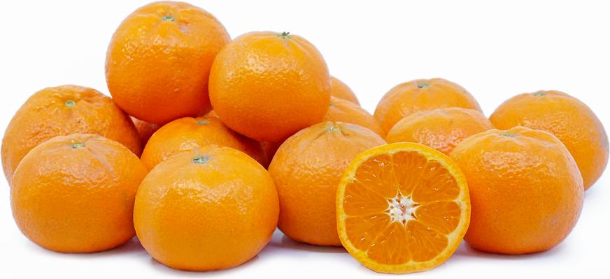 Tangerine Trees - Clausen Nursery