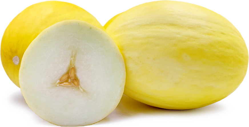Golden Honeydew Melon picture