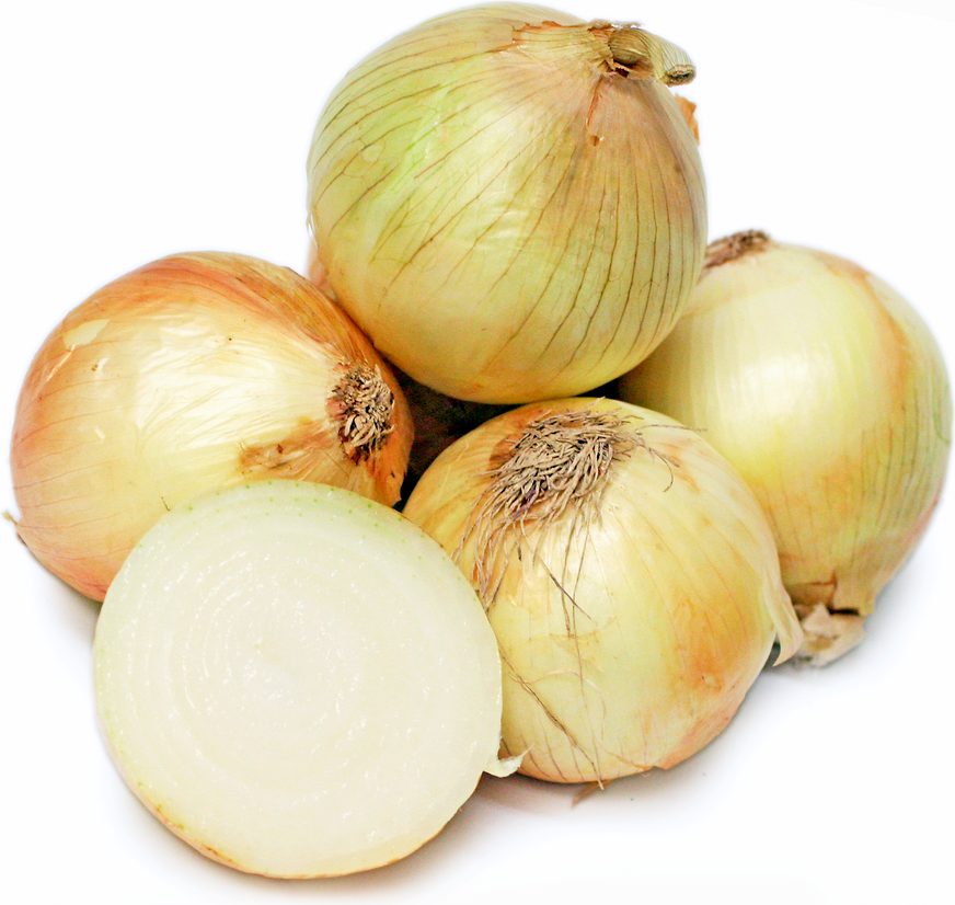 California Sweet Onions 1015