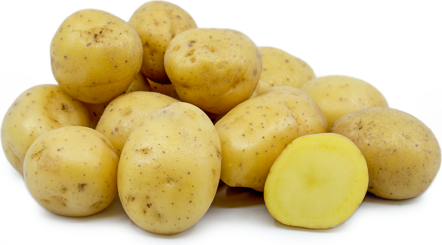 Yellow Creamer Potatoes