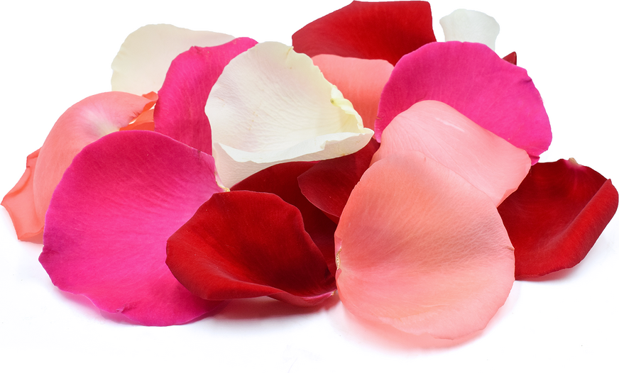 Rose Petal Flowers Information, Recipes and Facts