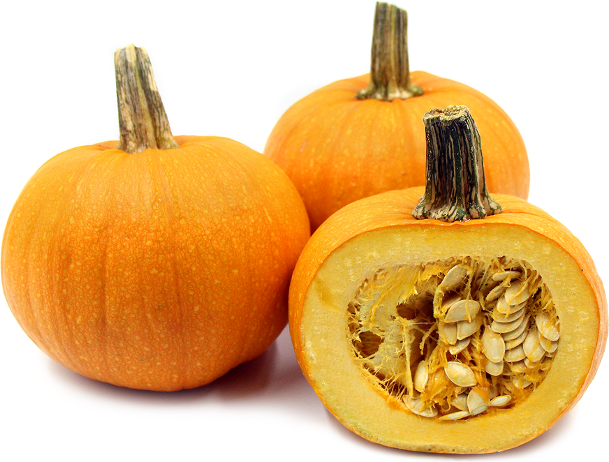 Organic Sugar Pie Pumpkins