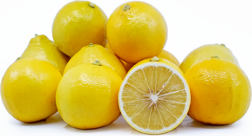 Bergamot Oranges picture