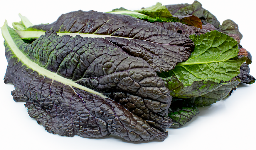 Red Mustard Greens picture