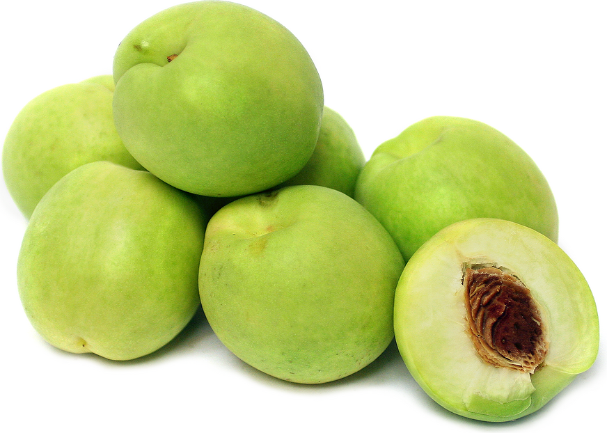 Honeydew Nectarines