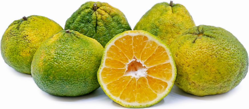 Ugli™ Fruit