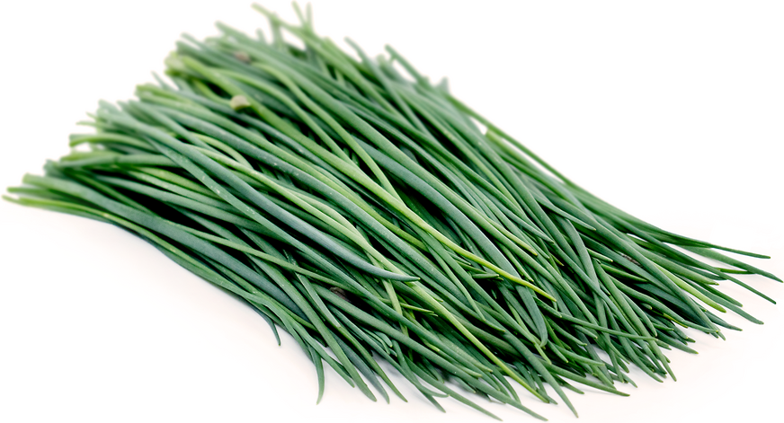 Chives Information, Recipes and Facts