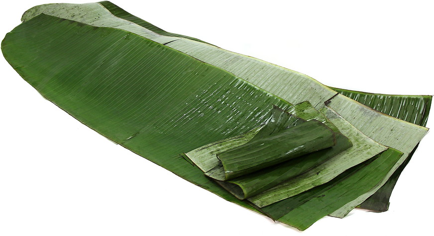 Banana Leaves picture