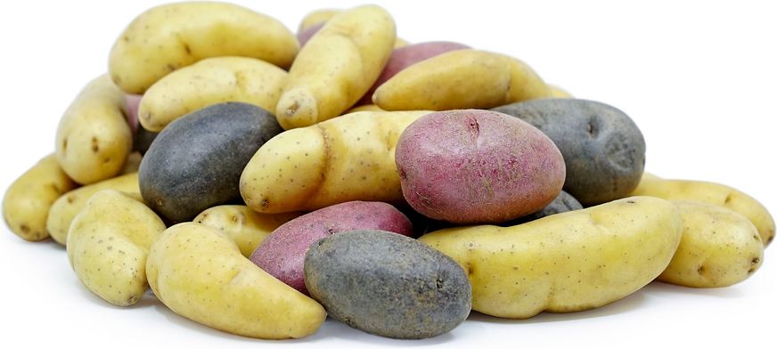 Mix Peewee Fingerling Potatoes picture