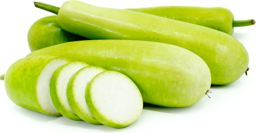 Opo Squash Information, Recipes and Facts