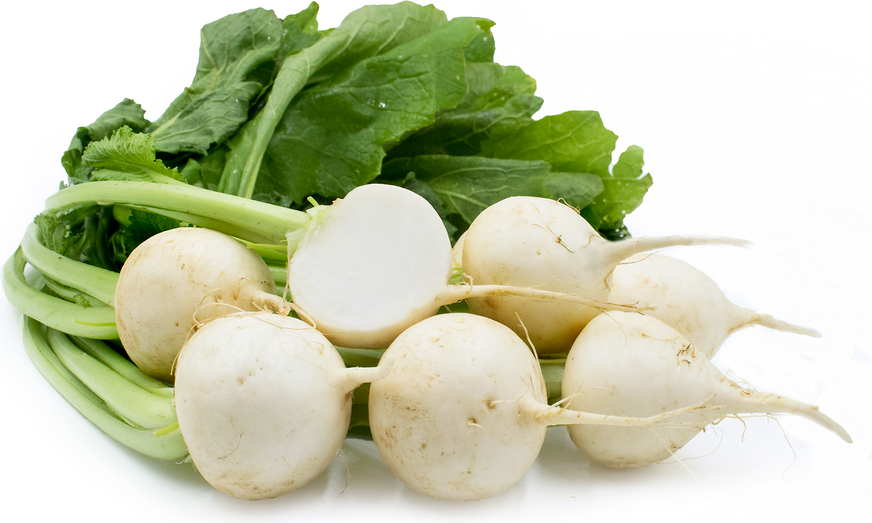Baby Bunch Turnips