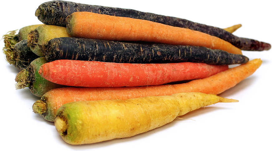 Rainbow Carrot Seeds | Cool Things To Buy For