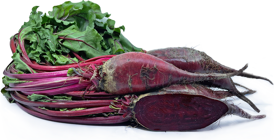 Red Forno Beets