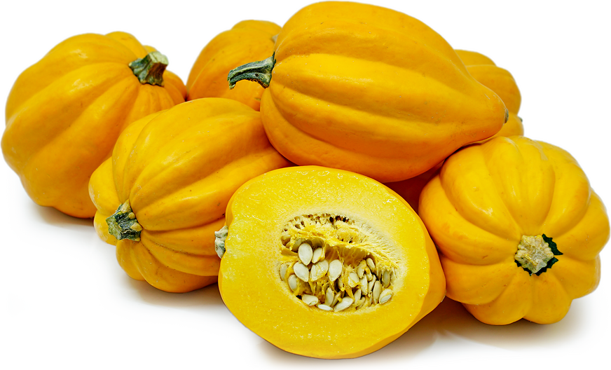 Gold Acorn Squash Information, Recipes and Facts