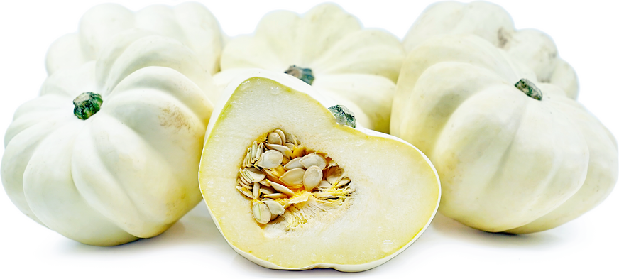 FM Squash Acorn White - Windrose Farm picture