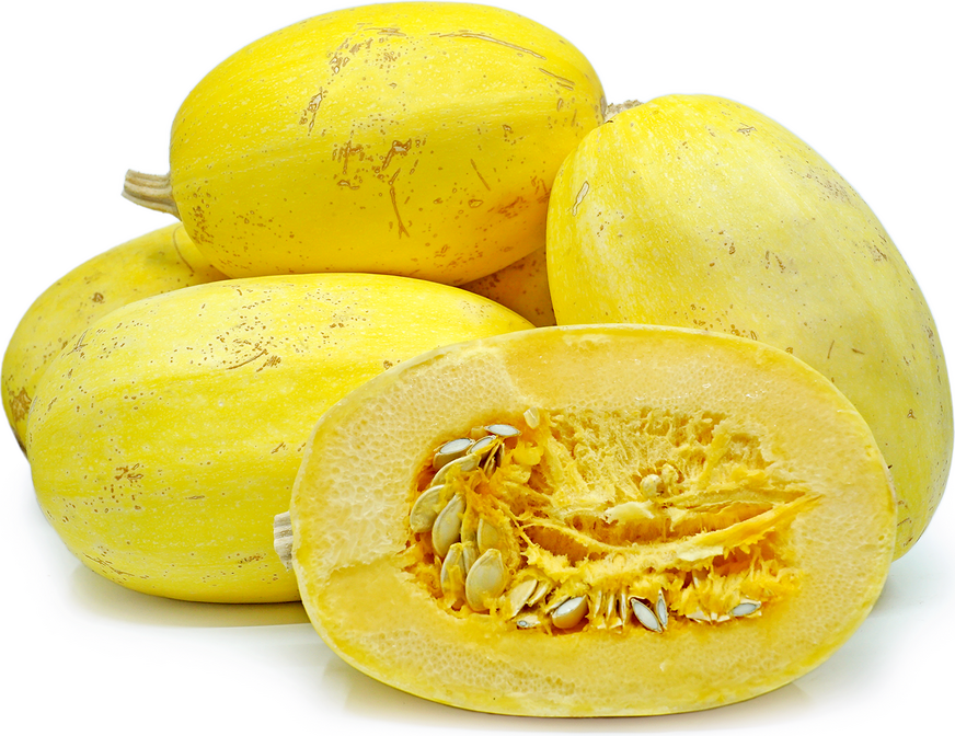 Spaghetti Squash Information Recipes And Facts