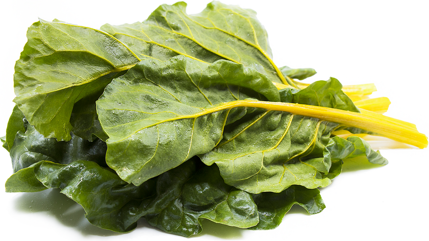 Golden Swiss Chard picture