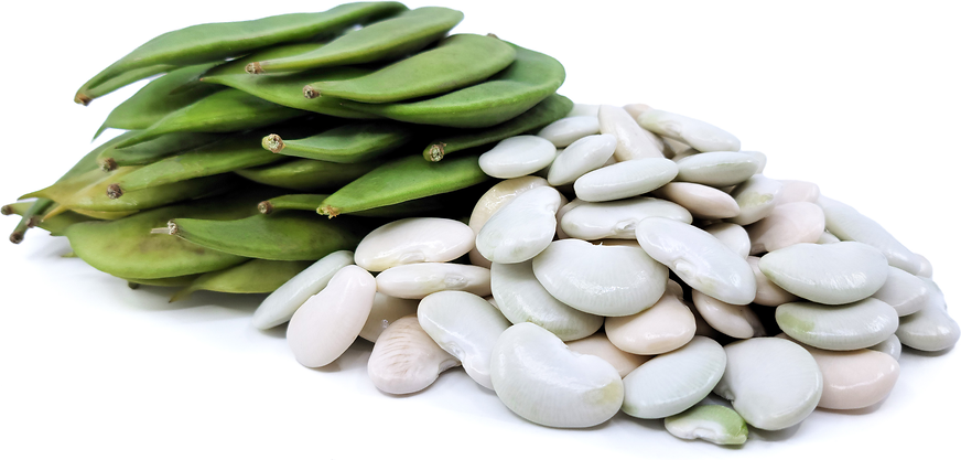 Dixie Butter Shelling Beans