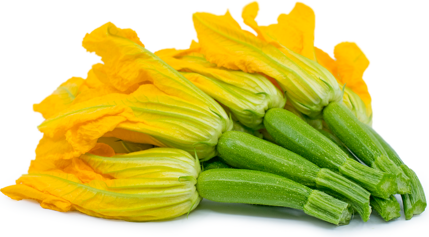 Baby Green Zucchini with Flower picture