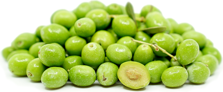 Fresh Green Olives picture