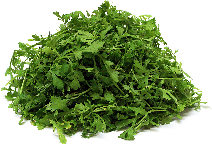 Persian Watercress