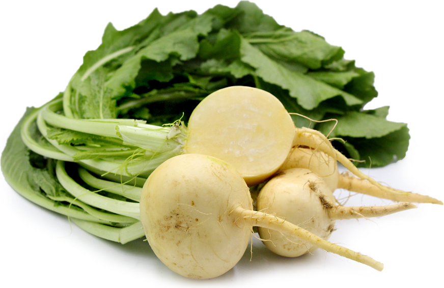 Baby Gold Turnips picture