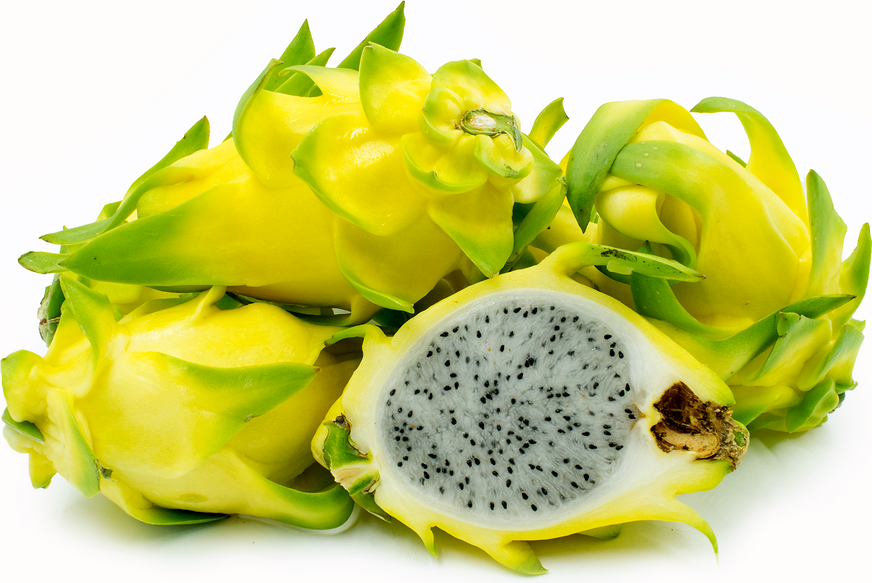 Yellow Dragon Fruit Pitaya